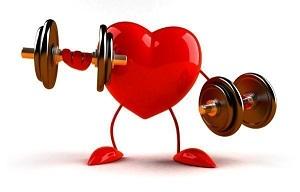 Картинки по запросу сердце и спорт